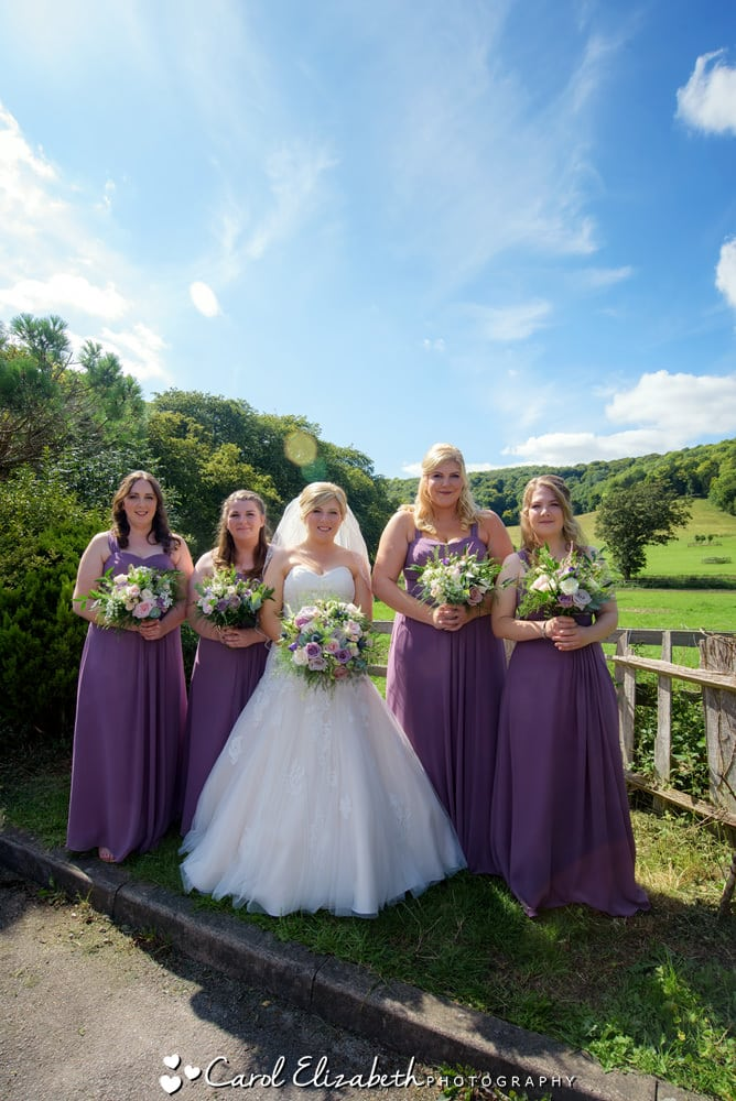 Bridal party in the sunshine