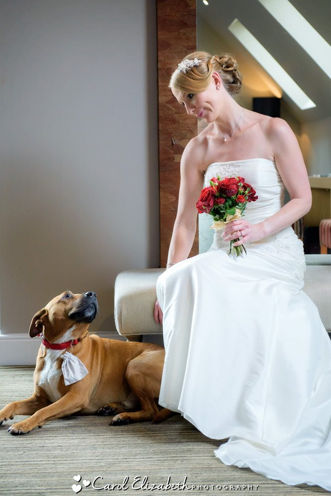 Bride and dog ringbearer