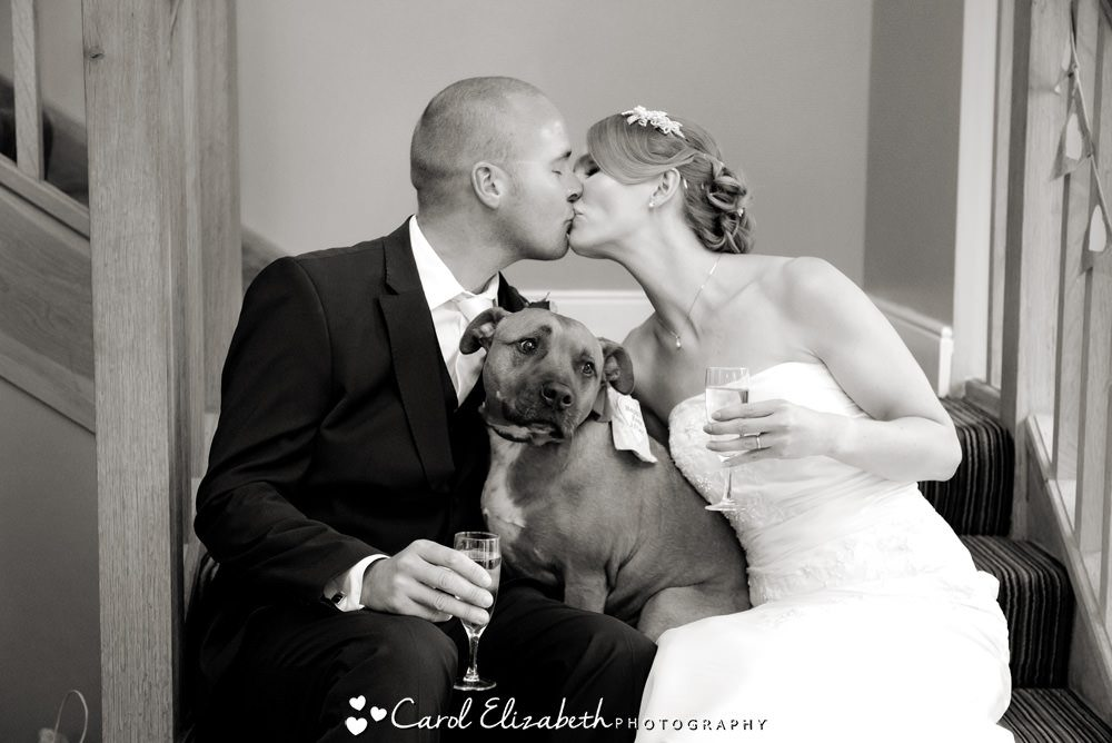 Bride and groom and ringbearer dog