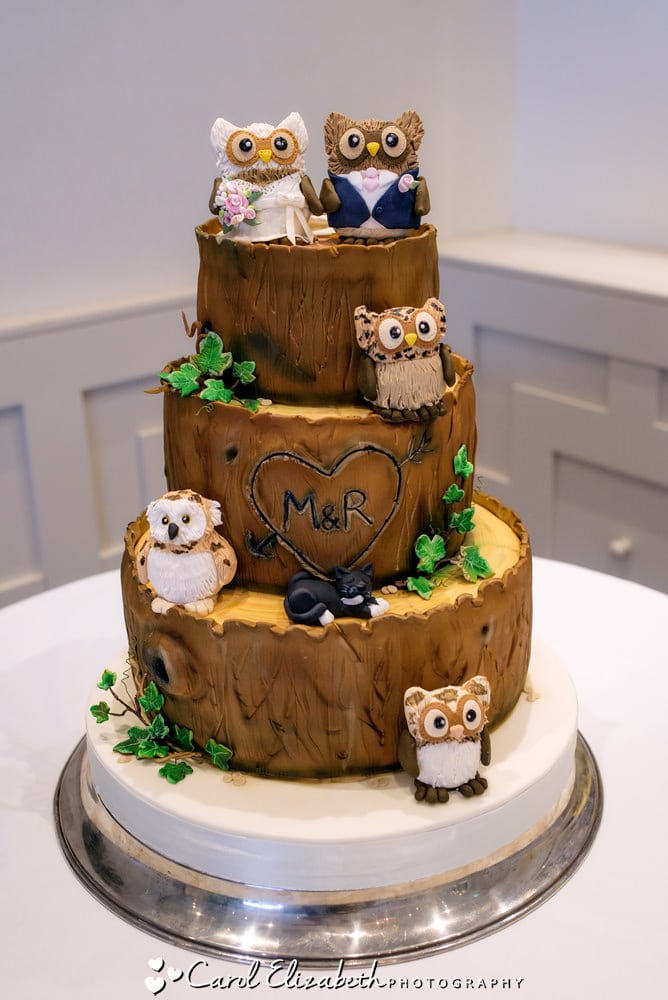 Owls wedding cake with chocolate icing